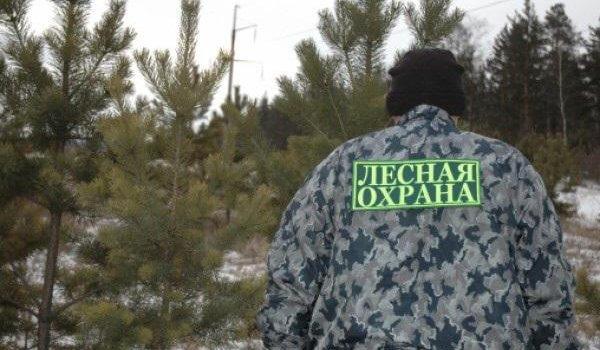 Государственная лесная охрана  перешла на усиленный режим работы в преддверии новогодних праздников