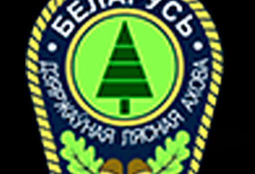 Коллегия Министерства лесного хозяйства.