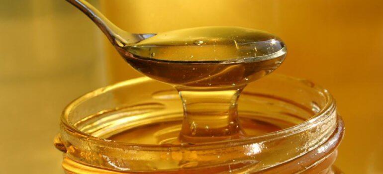 Спешите за медом