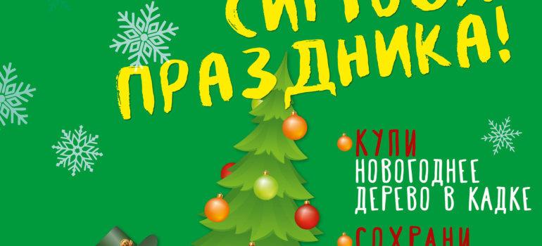 Итоги акции «Сохрани символ праздника»